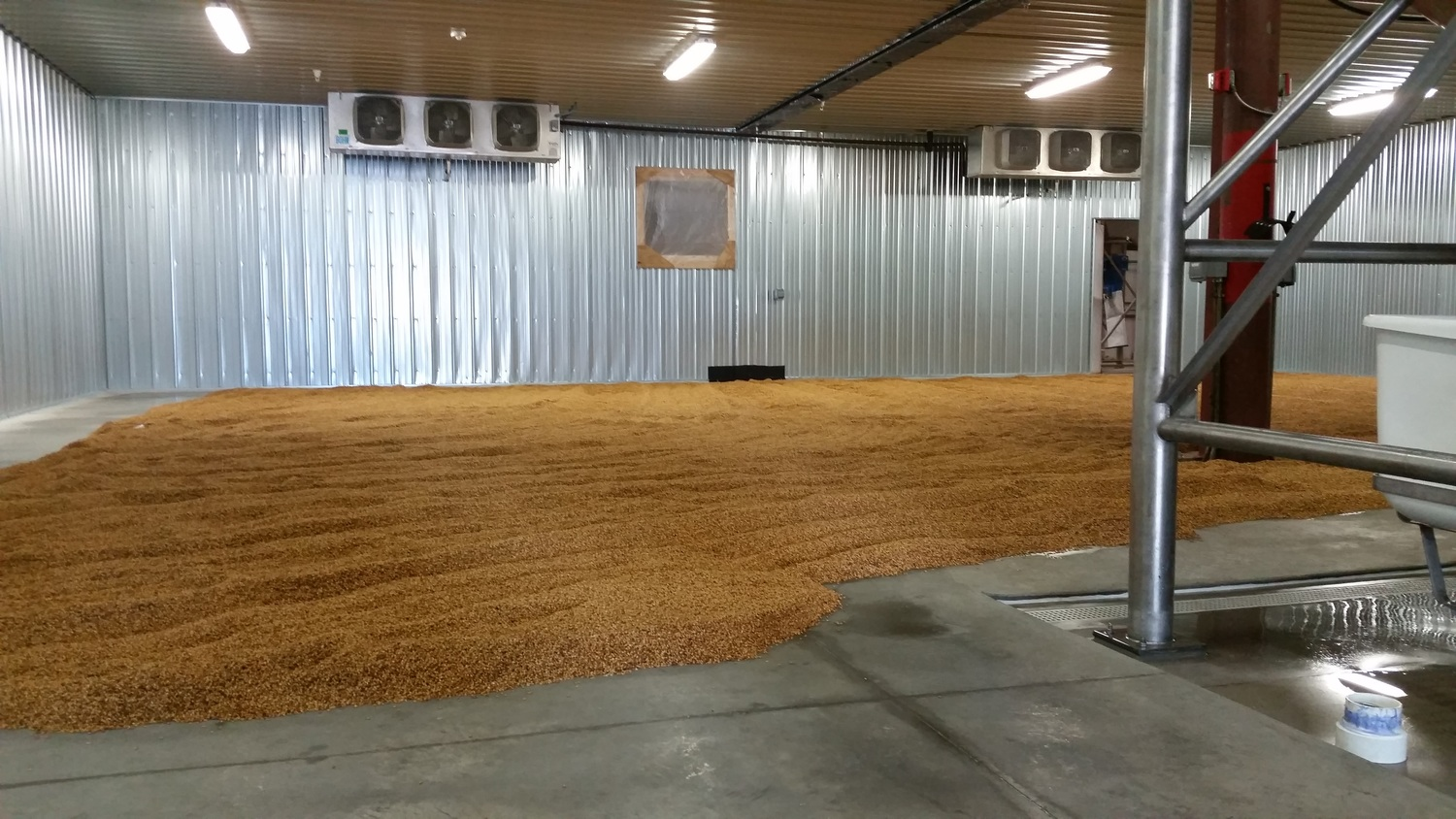 On the floor at Blue Ox Malthouse are tons of recently steeped grains that have begun the germination process. Behind the back wall is the kiln.