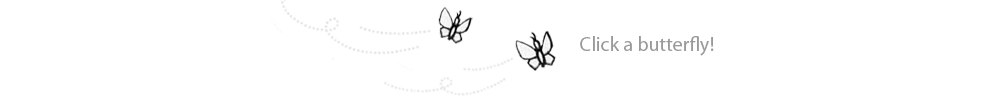 Butterfly Spacer