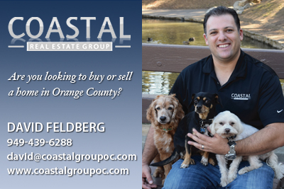 For your real estate needs, please contact David Feldberg. If you mention I.C.A.R.E. Dog Rescue, he will donate 10% of his commission check!