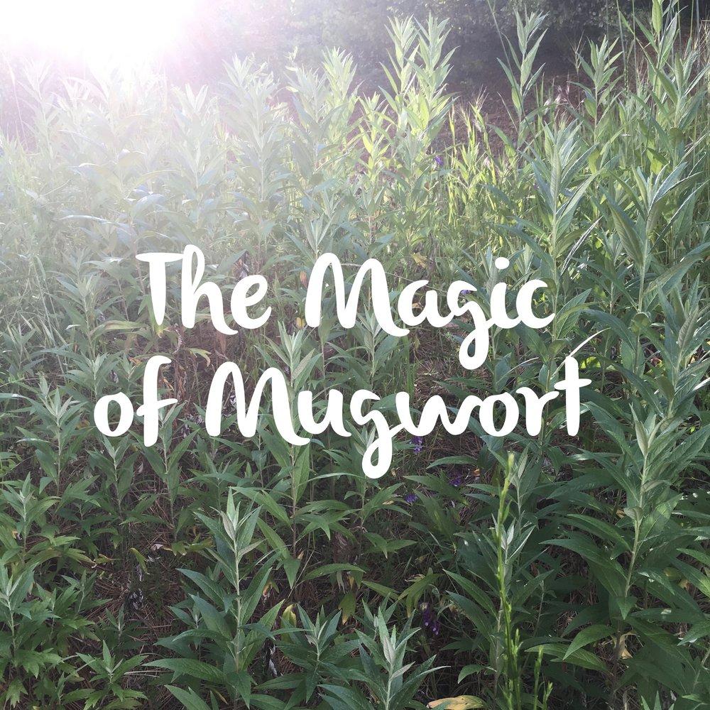 books — Blog — Mythic Medicine