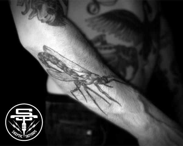 darwins_wasp_tattoo.jpg
