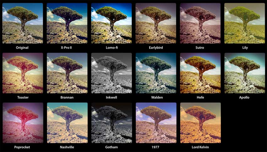 Look at how incredibly different a freaking tree can look depending on the filter. Imagine doing this to a sound.