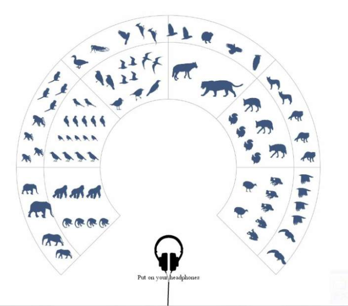 """Graphic representation of """"The Great Animal Orchestra"""", with animals arrayed like the instruments in an orchestra by the audio frequency of their sounds. (Foundation Cartier pour l'art contemporaine)"""