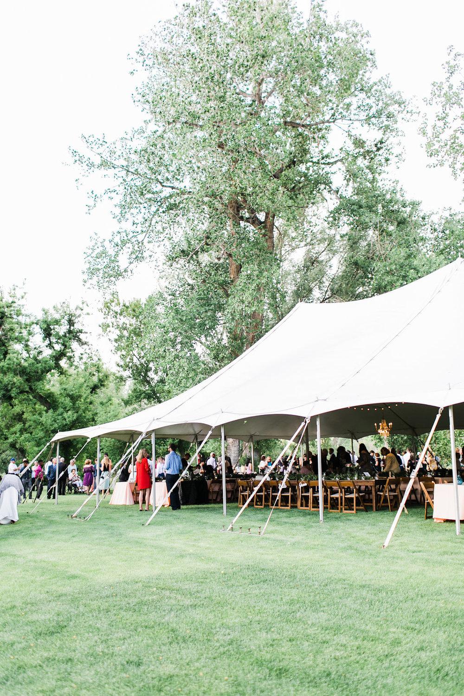 colorado mountain wedding reception photography