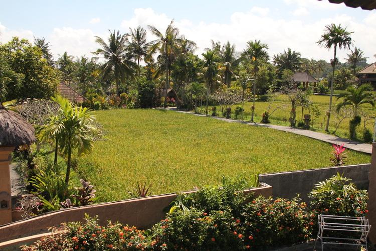 2 Bedroom Breeze Houses — Bali Breeze Bungalows