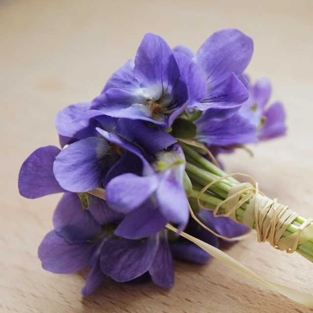 violets nosegay (4).jpg