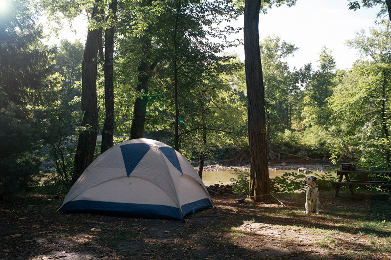 blackbear-campground-phoenicia-2.png