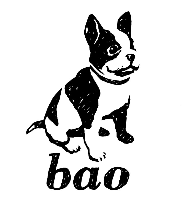 Bao-Publishing-logo.jpg