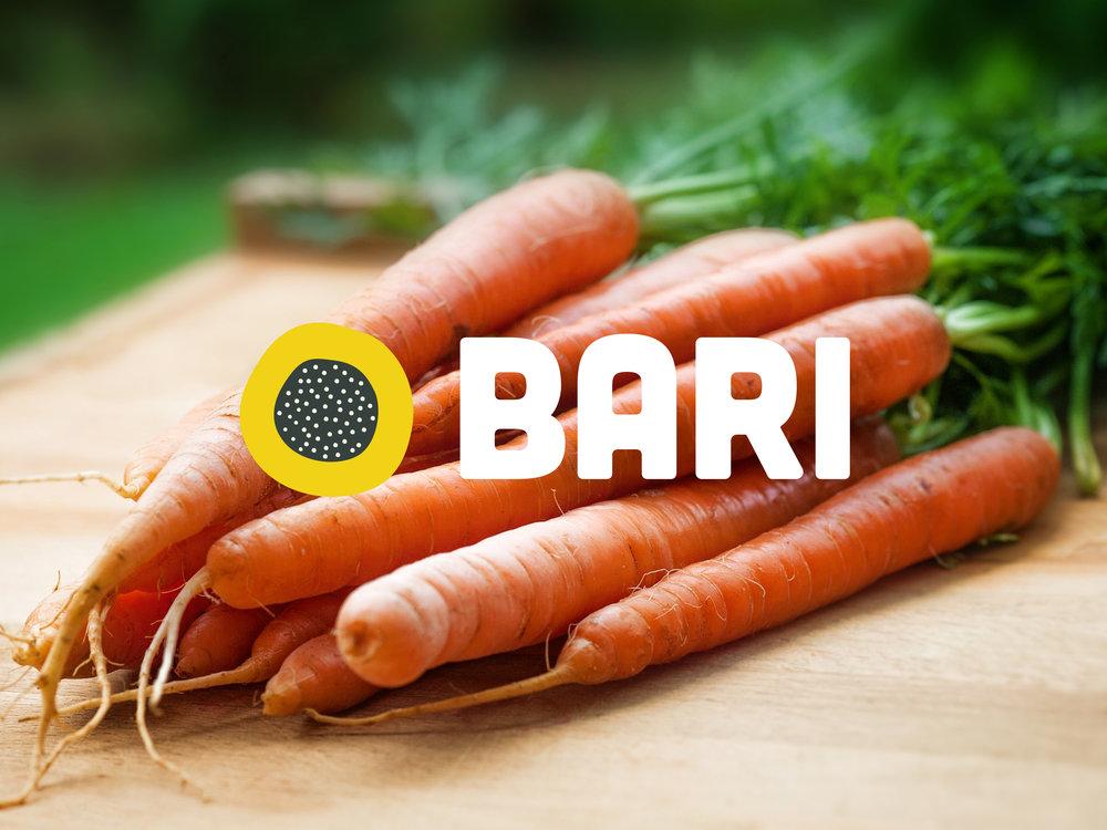 Bari_ipadScreen (1).jpg