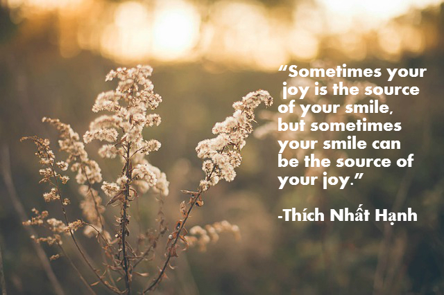 """""""Sometimes your joy is the source of your smile, but sometimes your smile can be the source of your joy."""" Thích Nhất Hạnh"""