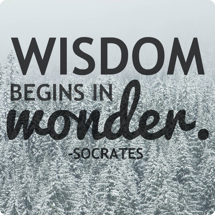 """Wisdom begins in wonder."" Socrates"