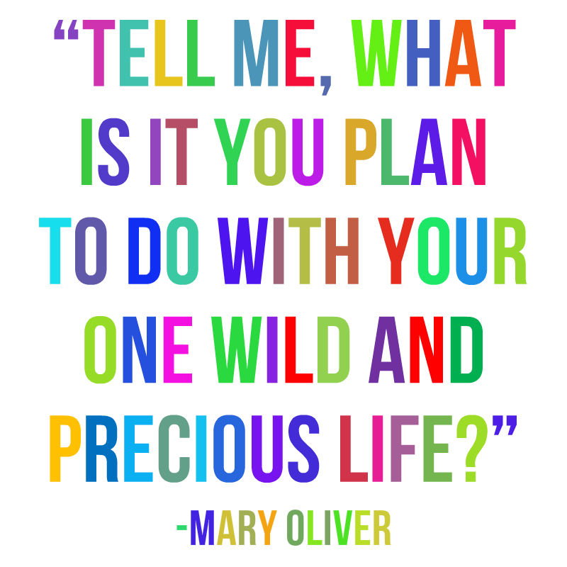 """""""Tell me, what is it you plan to do with your one wild and precious life?"""" Mary Oliver"""