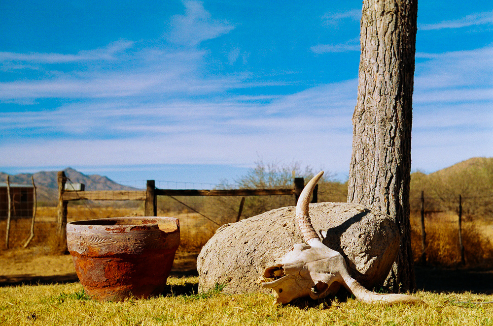 ArizonaRanchUtopia.jpg