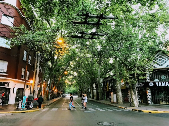 Streets of Mendoza in the morning