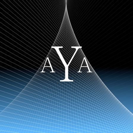 AYA Consultants LLC