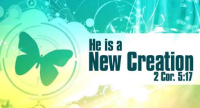 New Creation Bible Church