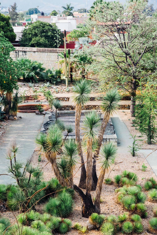 MonicaRGoya-Gardens-7.jpg