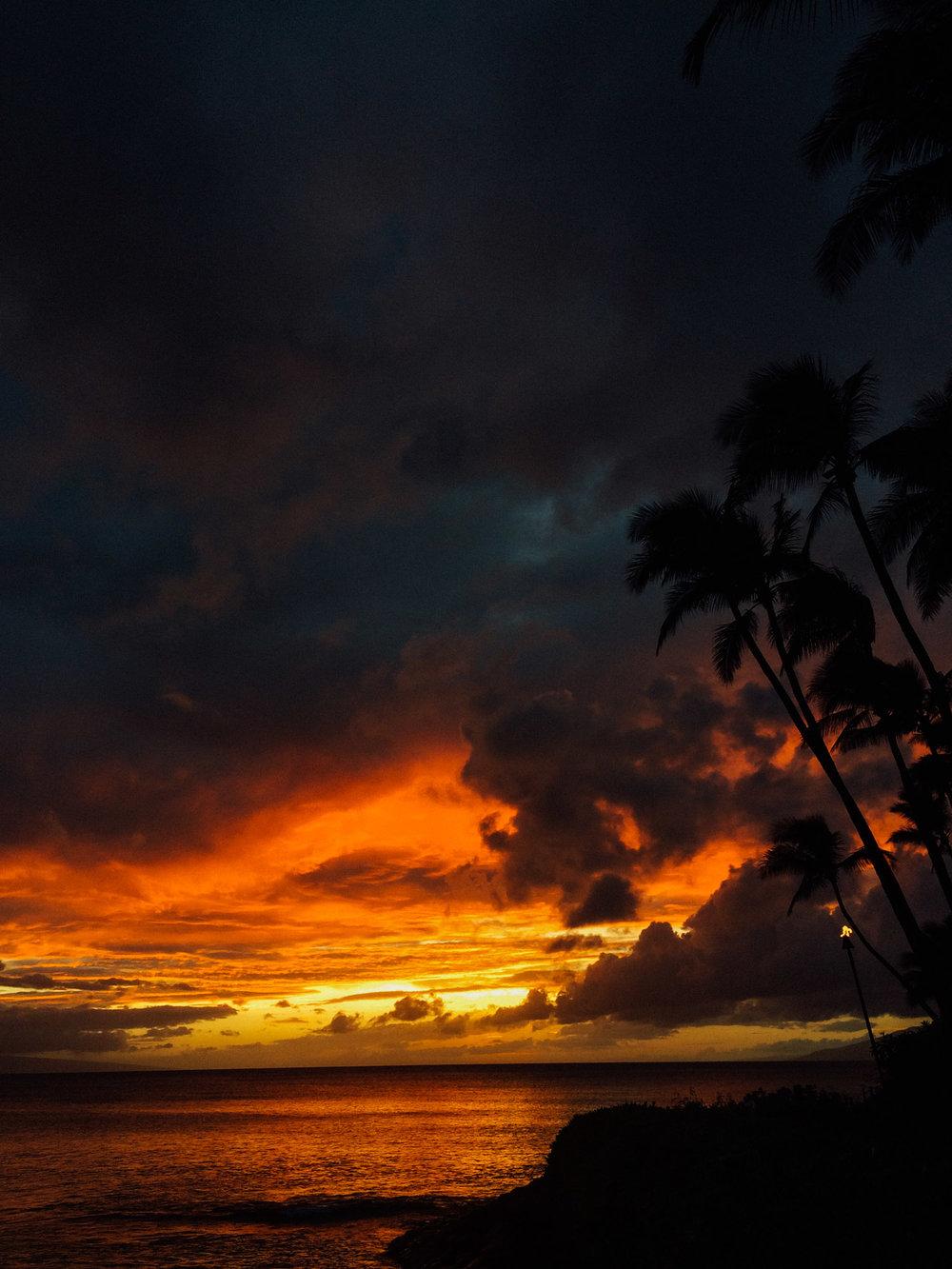 MonicaRGoya-Maui-28.jpg