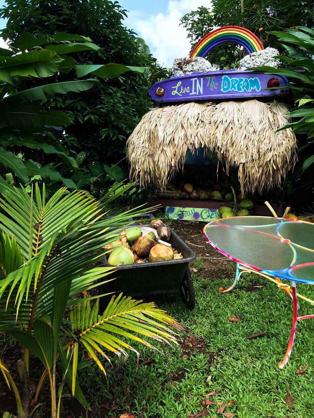 MonicaRGoya-Maui-25.jpg