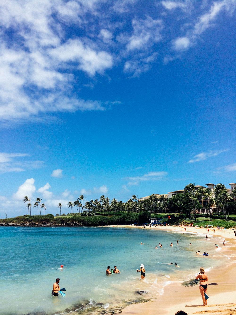 MonicaRGoya-Maui-30.jpg