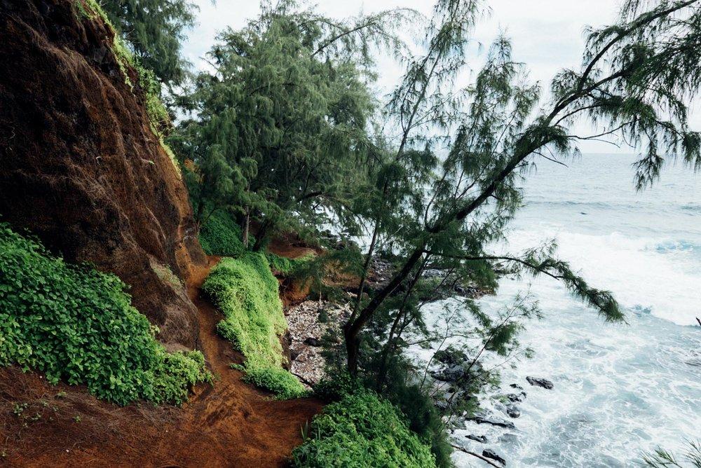 MonicaRGoya-Maui-44.jpg