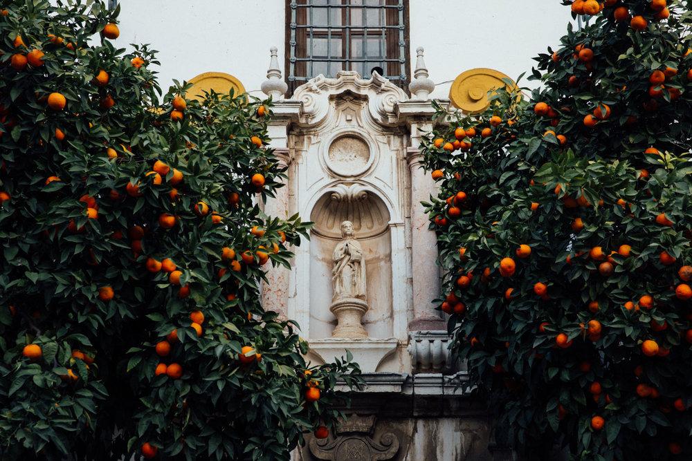 Seville-MonicaRGoya.jpg