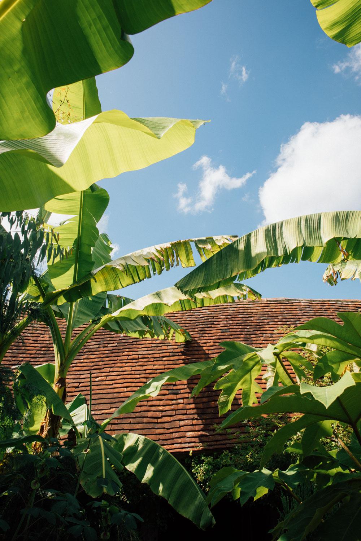 MonicaRGoya-gardens-36.jpg