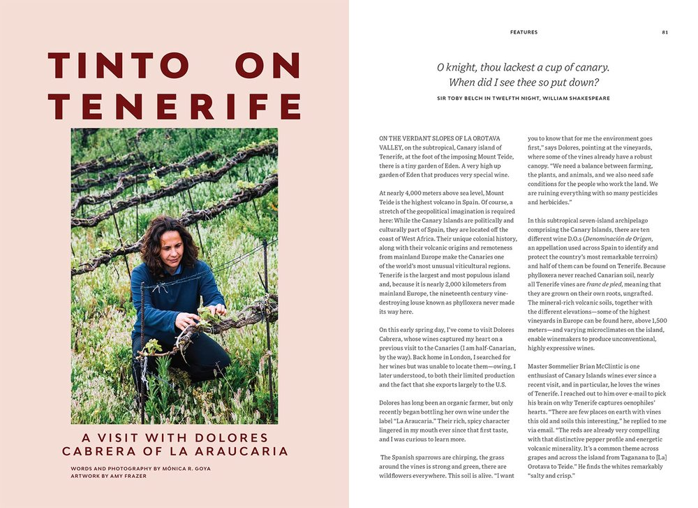 La Araucaria Winery, Tenerife - Pipette magazine Issue 1 - Writing & Photography