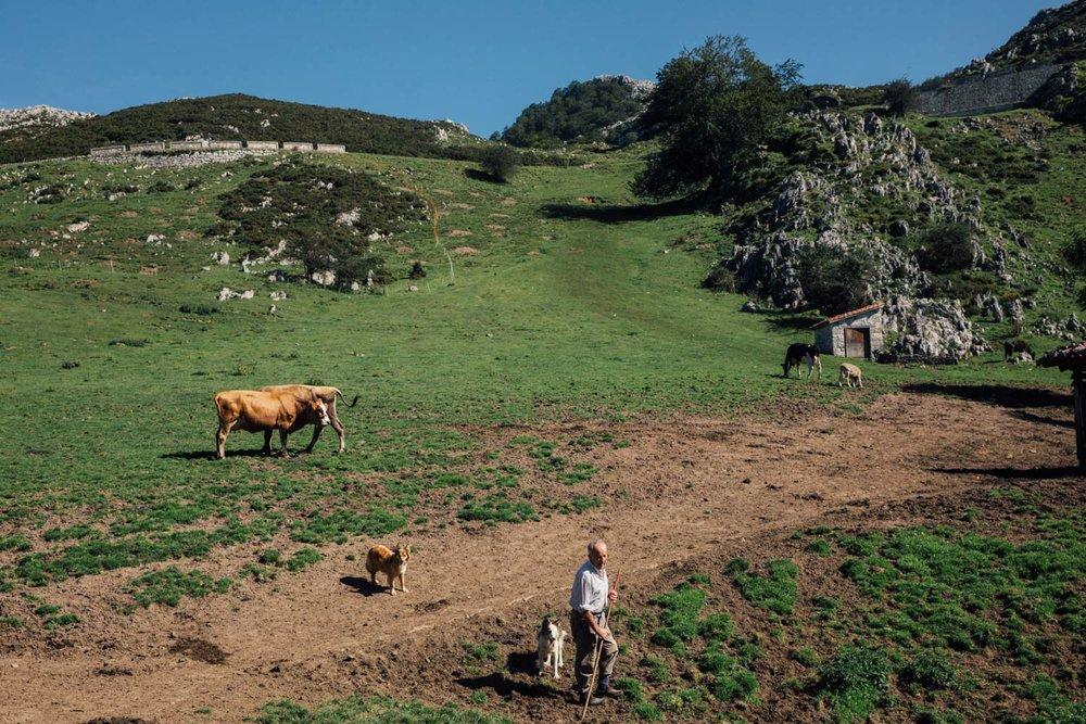 MonicaRGoya-Farming-20.jpg