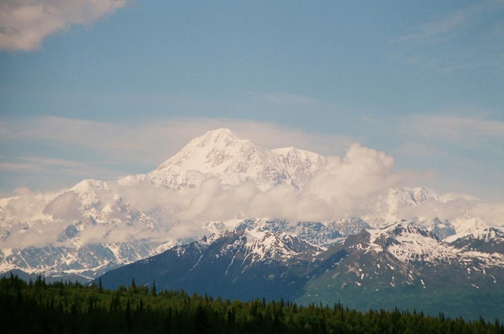 Film - Chasing Bears Alaska   8.JPG