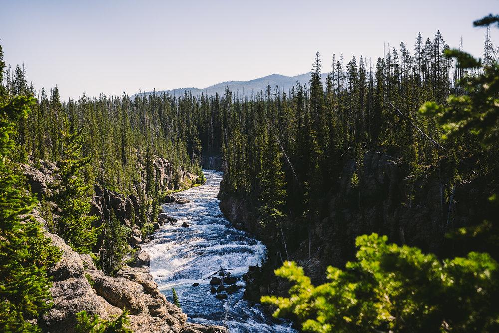 META_Yellowstone (83 of 129).jpg