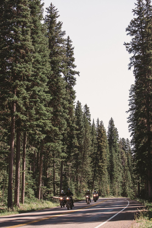 META_Yellowstone (72 of 129).jpg