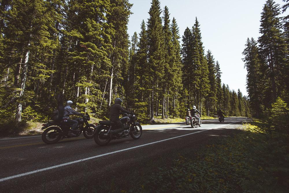META_Yellowstone (90 of 129).jpg