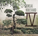 Bonsai Boulevard brings you six new, addictive songs featuring intertwining male and female vocals, cello, and guitar overlaying a grooving rhythm section. In their new 2018 EP IV, Bonsai expresses the raw side of sentimentality in their live recordings at Bedrock Studios in Los Angeles.