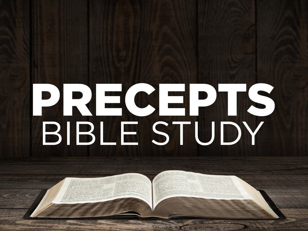 Precepts Bible Study at Austin Oaks Church
