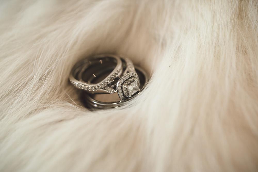 wedding-photographer-dallas