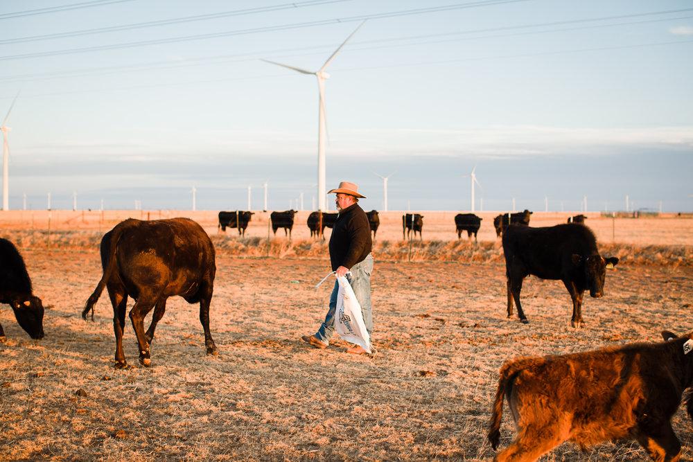 Farm-photographer-texas-7.jpg