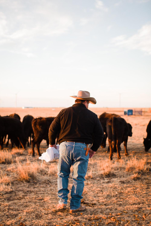 Farm-photographer-texas-9.jpg
