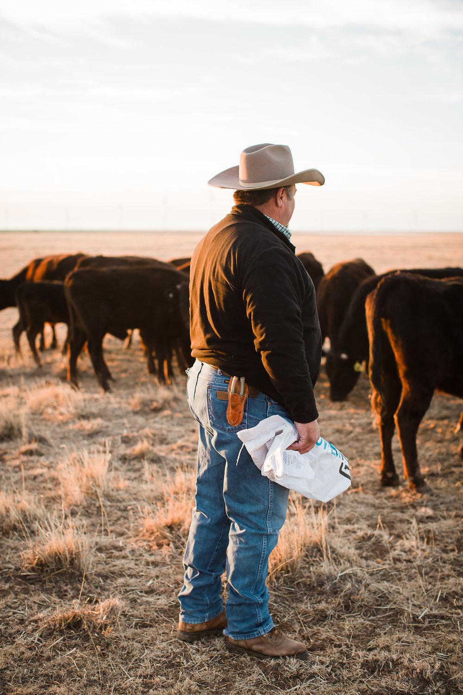Farm-photographer-texas-10.jpg