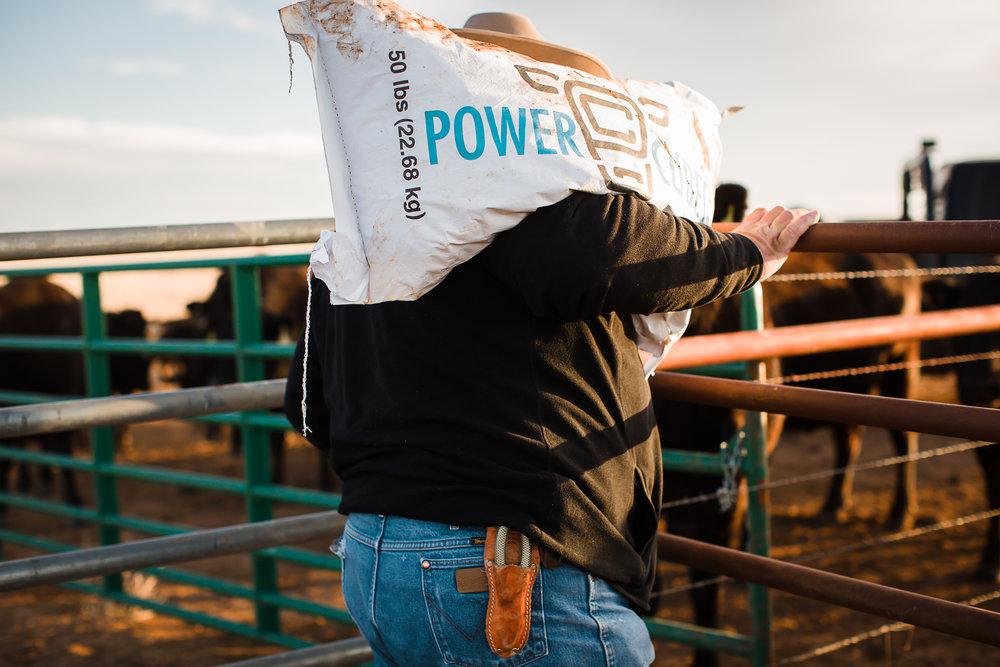 Farm-photographer-texas-17.jpg