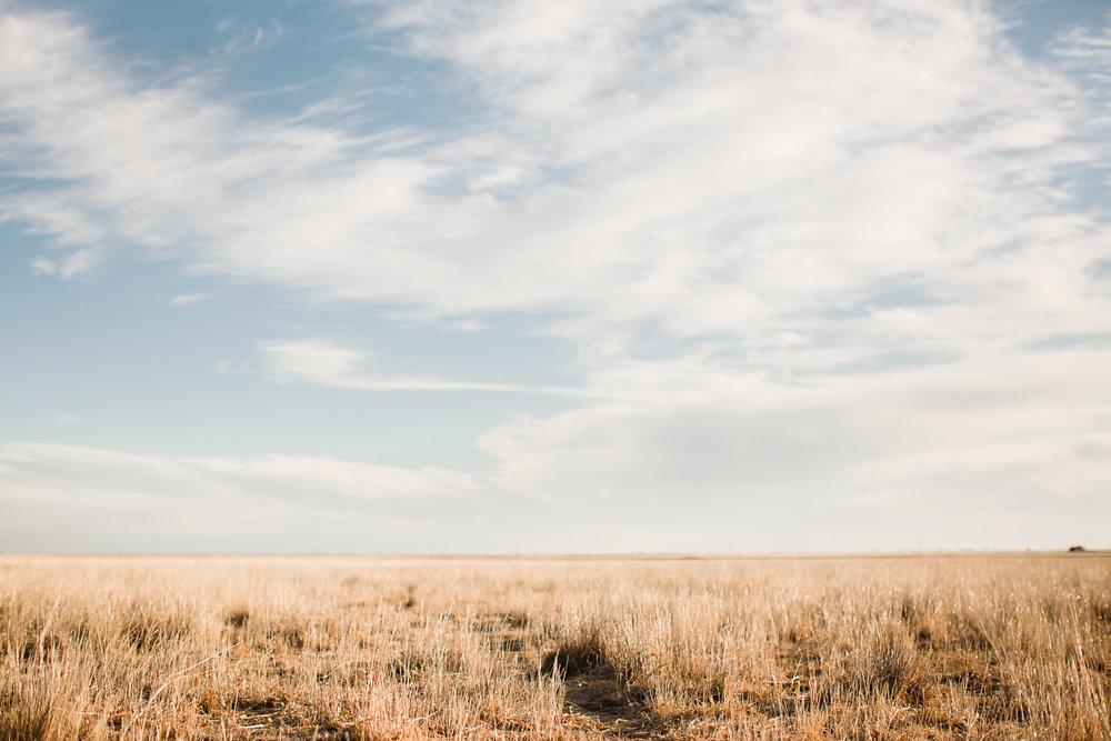 Farm-photographer-texas-21.jpg