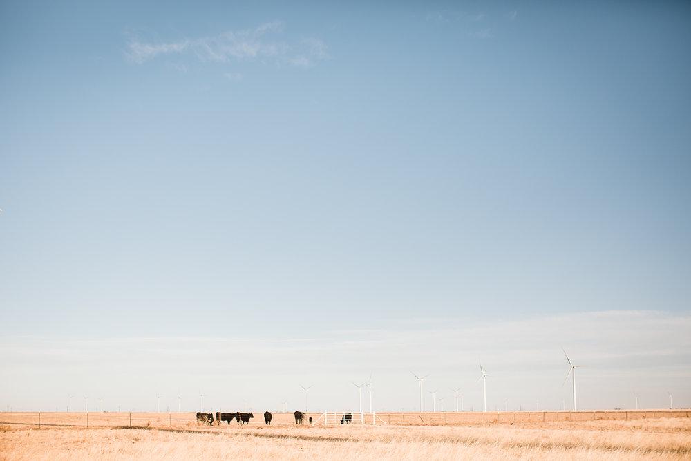 Farm-photographer-texas-22.jpg