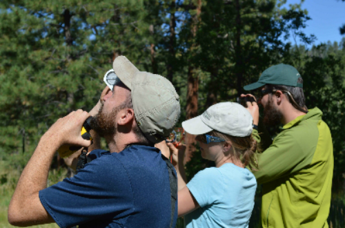 Citizen Scientists measuring tree height Saturday, August 16th near Pagosa Springs, CO.