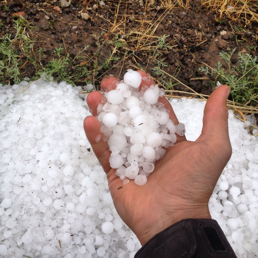 theterraproject hail
