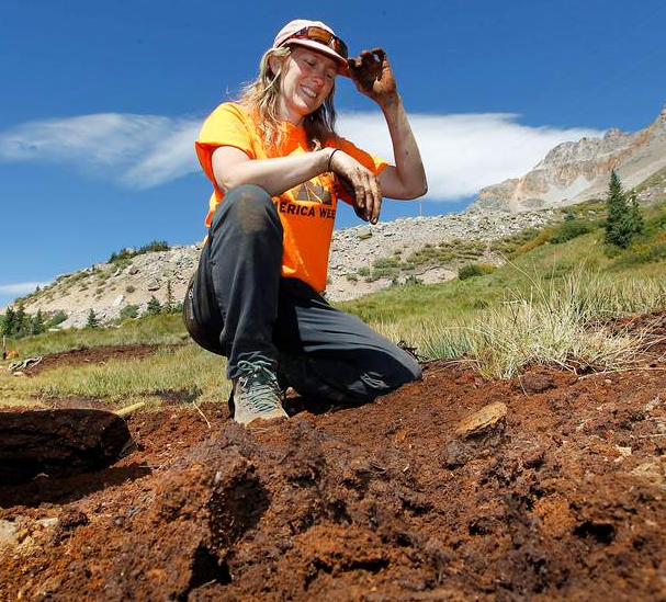 Marcie Demmy-Bidwell, director of Mountain Studies Institute, plants plugs of grass near Ophir Pass. The institute recently received a grant from the AirWaterGas Sustainability Research Network based at the University of Colorado Boulder. It will be holding discussions across the region on the relationship between water and energy.
