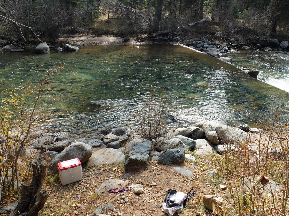 Vallecito Creek Sampling site