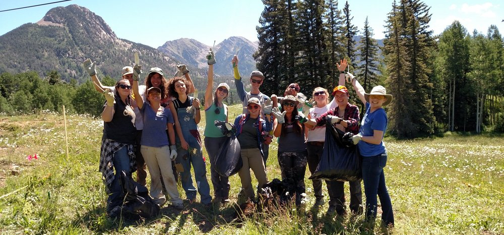 2016 FC-FLIP Interns celebrate a successful crucade against invasive Oxeye Daisy infestation near Coal Bank Pass.