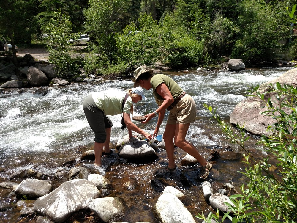 Local teachers practice a lesson on benthic macroinvertebrates (river bugs).