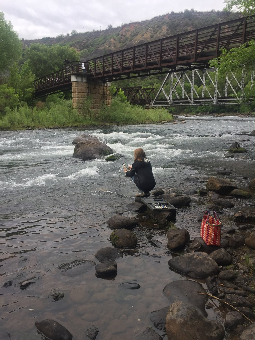 During weekend rains, Page Buono collected water samples along the Animas River on June 16th.