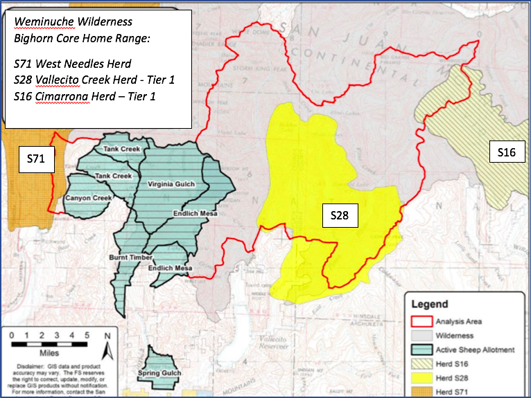 PROJECT AREA OF HIGH INTEREST:    Active Domestic Sheep Allotments in Relation to Bighorn Core Home Range in Weminuche Wilderness. Note Vallecito Reservoir at the bottom center for reference.